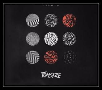 Stressed Out (Tomsize Remix) Ringtone Download Free