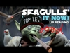 SEAGULLS Stop It Now Ringtone Download Free